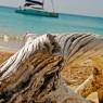 Stony Horn - catamarani noleggio Antille - © Galliano