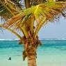 Ilet de Petite-Terre - vacanze barca vela noleggio Caraibi - © Galliano