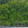 Martinica - vacanze in barca Caraibi - © Galliano