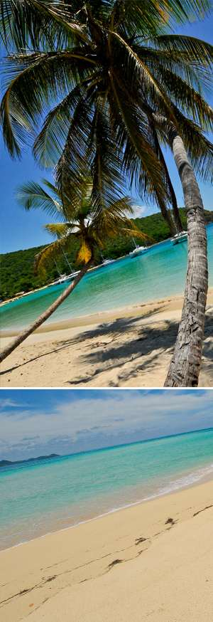 slide-isole/mayreau/mayreau salt whistle bay/catacaribe_pagina_ingrandimento_mayreau_salt whistle bay_5.jpg