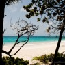 Mustique - Grenadine - vacanze in barca Caraibi - © Galliano