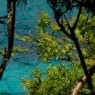 Tobago Cays Grenadine - catamarani noleggio Antille - © Galliano